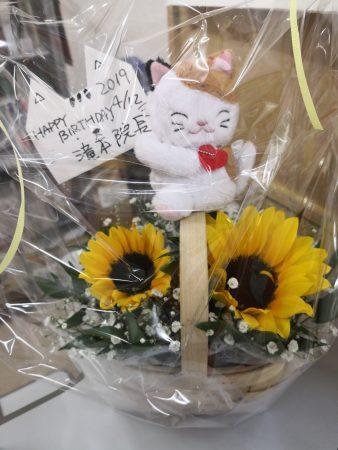 お祝いのお花はひまわりです!